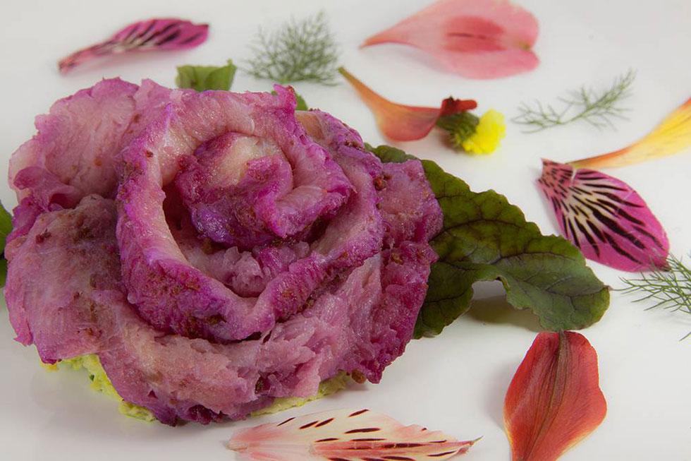 surubi-rosa